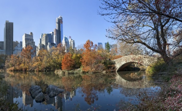 a view of central park from across the waterway