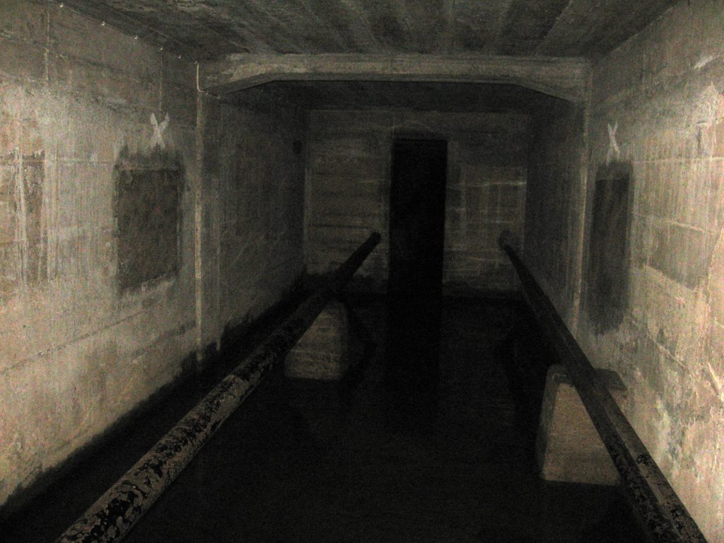 photo shows a dark and dingy basement