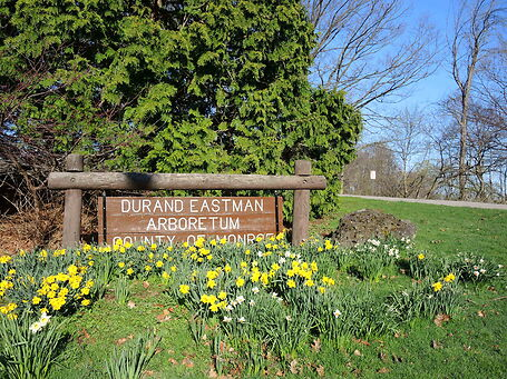 photo shows the durand eastman park sign