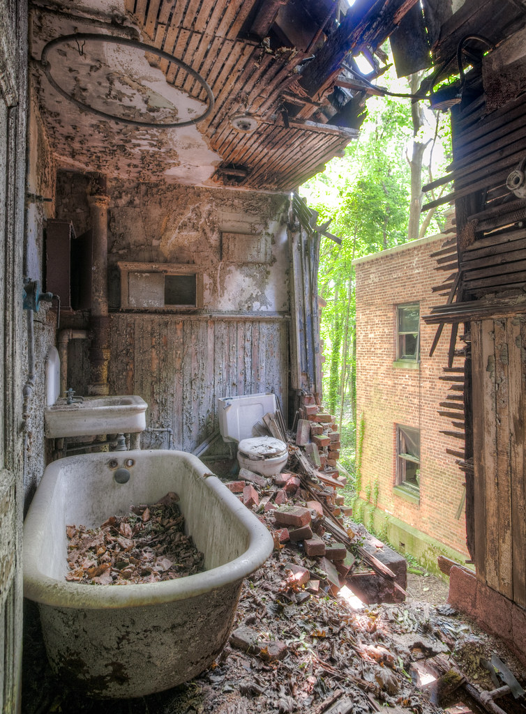 photo shows a bathroom with no ceiling, bricks all over the floor and inside a claw foot tub, with vines growing throughout.